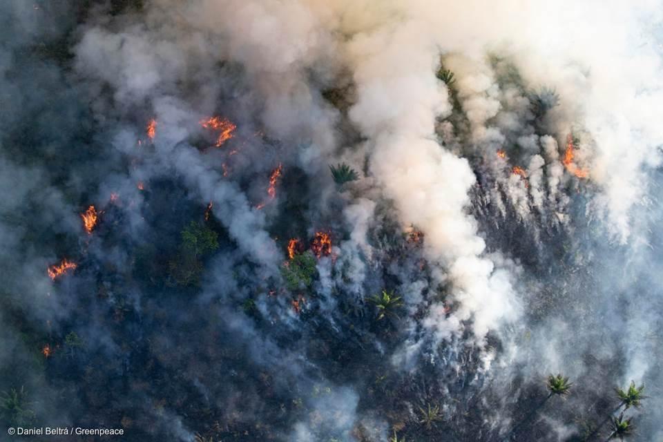 Pol�cia do Par� identifica suspeitos de provocar queimadas na Amaz�nia