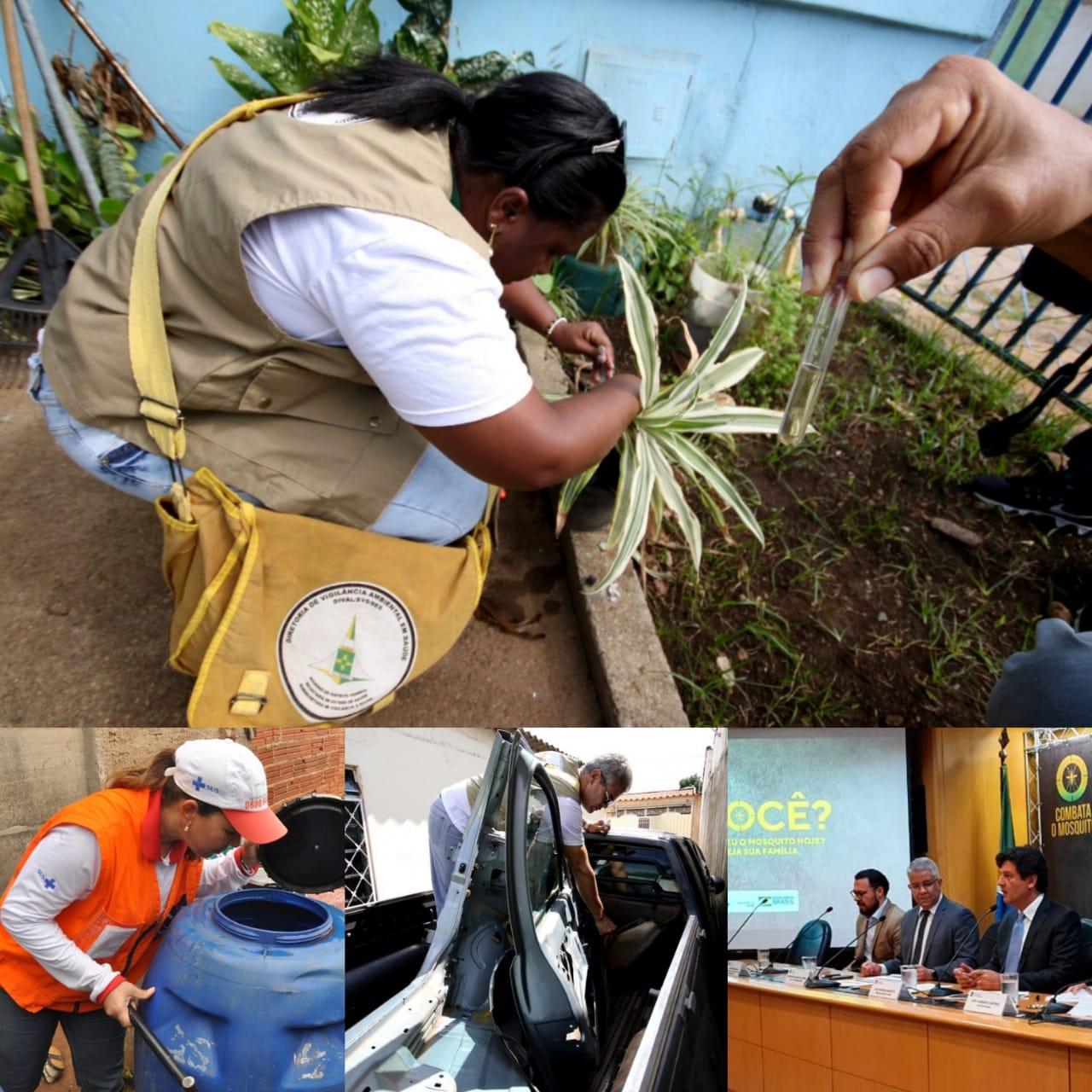 N�meros da dengue deixam Goi�s em alerta